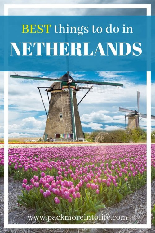 If you are planning to visit the Netherlands, there are tons of charming towns and art museums to visit. Kids however, may prefer a different Netherlands itinerary. Here are the best things to do in the Netherlands with Kids. #europe #travelwithkids #netherlands