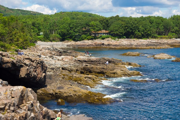 Acadia National Park Activities: Walking along the cliff sides looking at the tidal pools.