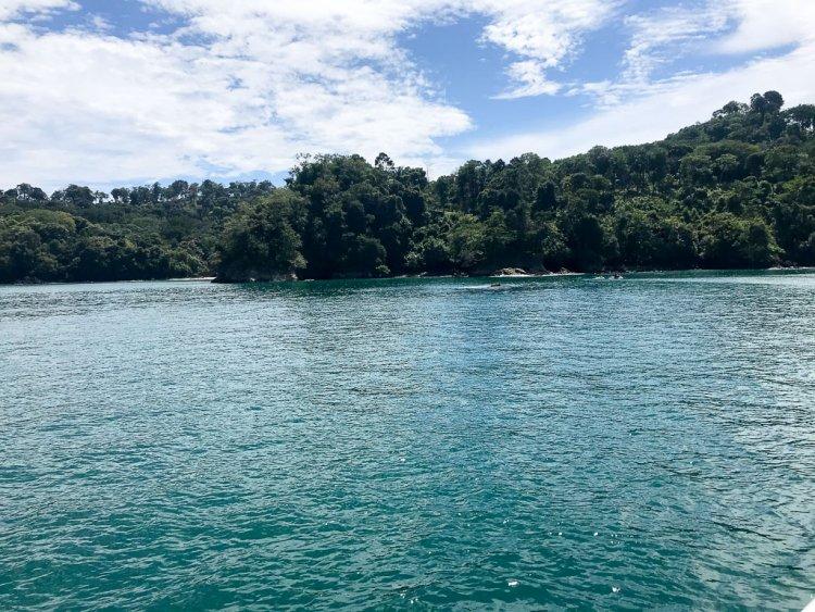 Ocean King catamaran Manuel Antonio National Park views from the boat.