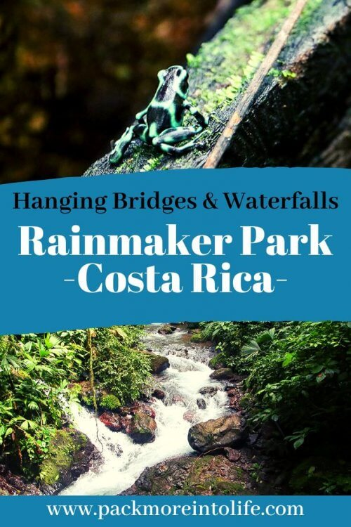 Looking for places to visit near Manuel Antonio and Quepos? Check out Rainmaker Conservation Project  to enjoy a unique and diverse forest with hanging bridges, waterfalls and unique wildlife. Check out our detailed guide and more information about what to expect in Rainforest Park Costa Rica. #Costarica #hangingbridges #ecotourism #rainforest