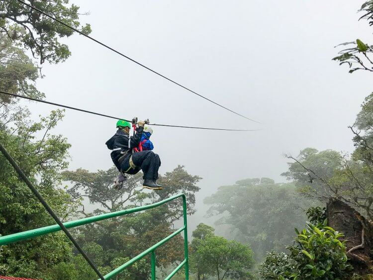 Little boy and adult harnessed into a zipline.