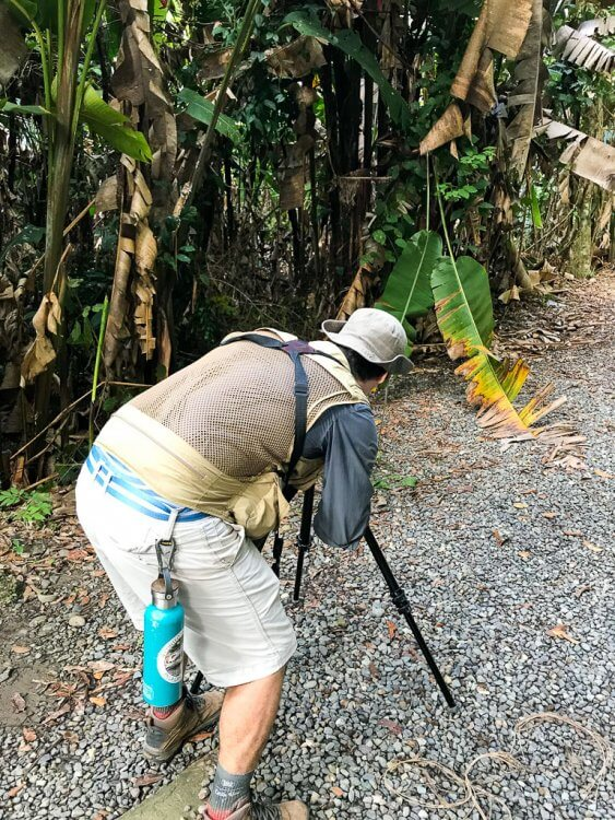 Taking a guided tour of Manuel Antonio National Park is one of the things to do in manuel antonio costa rica