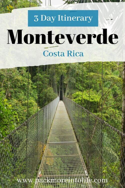 Looking for the best things to do in Monteverde, Costa Rica? Don't miss this guide including the best zip lining and reserves to see the elusive quetzal bird and the best restaurants in Monteverde. We've got it all and more in this 2020 guide to Monteverde. #monteverde #costarica #cloudforest #travel #adventuretravel