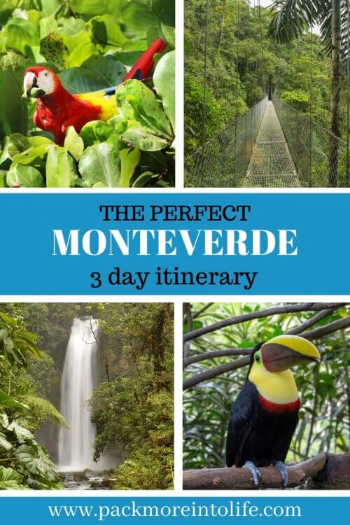 Are you looking for the best things to do in Monteverde, Costa Rica? Let me help you plan your 3 day itinerary with ziplining, when the best time to visit the Monteverde Cloud Forest reserve and where the best restaurants in Monteverde are located. Explore the lush landscape of Monteverde with this 2020 guide to Monteverde, Costa Rica. #travel #monteverde #centralamerica #travelwithkids