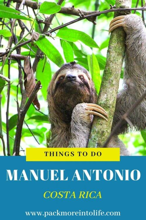 Planning a trip to Manuel Antonio, Costa Rica? Check out the top things to do in Manuel Antonio, Costa Rica along with lodging, places to eat and of course which beaches to visit! #costarica #manuelantonio #thingstodo #travel