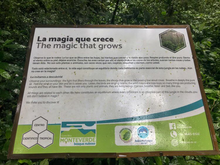 A sign with informational text written in Spanish and English about the magic that grows in the Monteverde Cloud Forest Reserve.