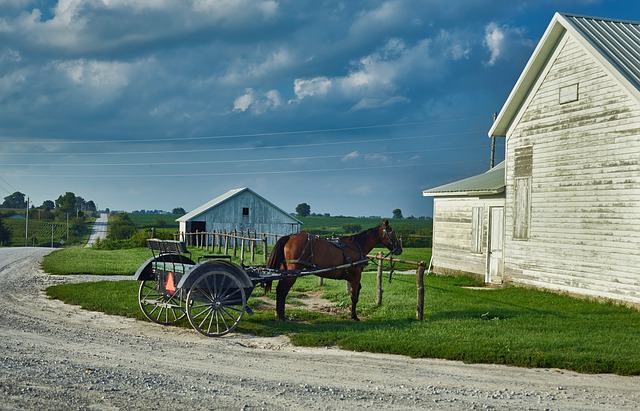 Horse with buggy standing by a post with a barn and building in the background. Gravel roads, cloudy skies and green grass.