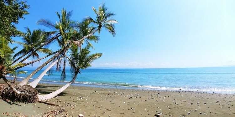 View of the beach in Manuel Antonio, Costa Rica. Check out our favorite things to do in Manuel Antonio, Costa Rica.
