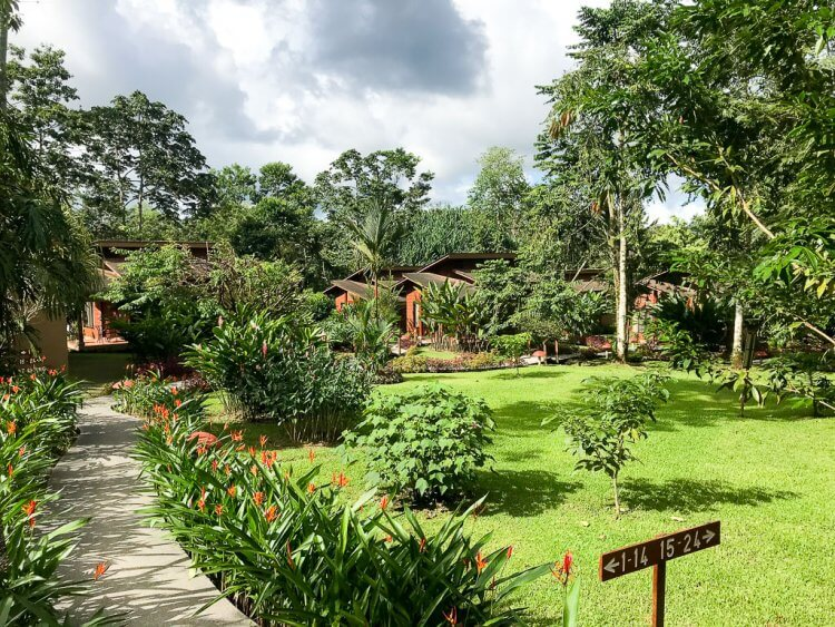 Photo of the grounds at Hotel El Silencio Del Campo with paved paths lined with plants and trees.