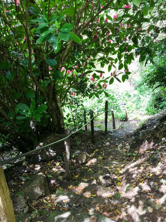 Trail conditions with steps, railing and uneven surfaces.