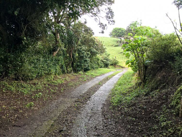 Road conditions headed towards the entrance of Viento Fresco Waterfalls.