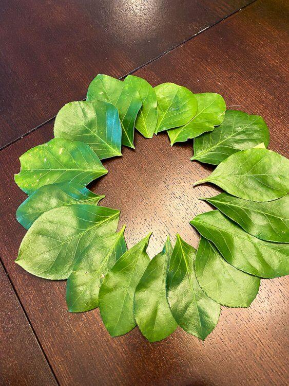 A crown of leaves.