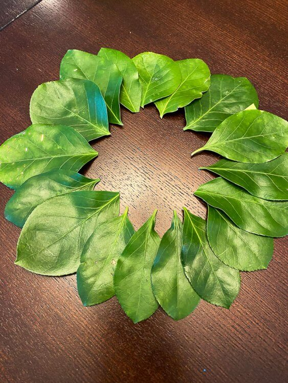 Greek wreath made out of leaves and construction paper