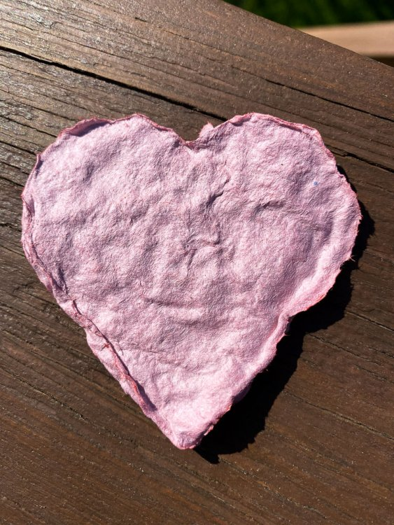 Dried heart from the chinese homemade paper craft.