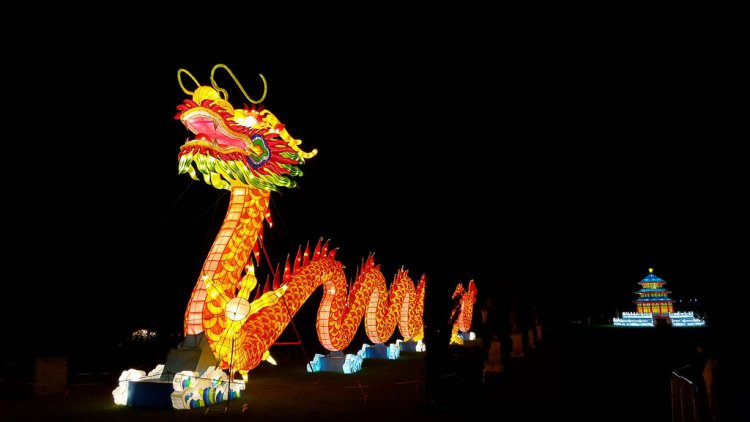 Night photo of a dragon all lit up with beautiful colors.