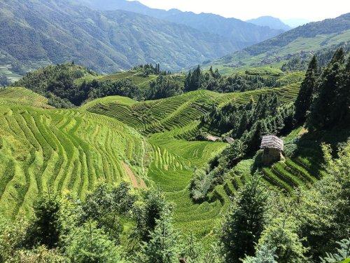 Terraced Fields in China.