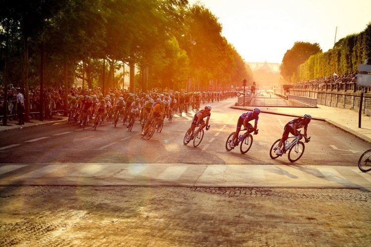 Men biking the Tour de France in the early morning light.
