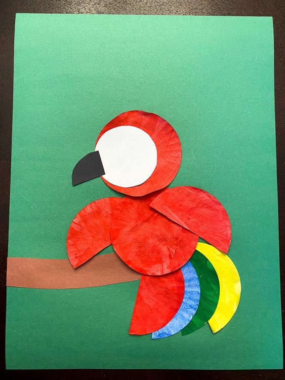 Gluing a white circle and black beak on the head of the parrot.